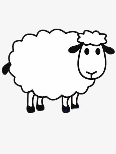 温顺的小绵羊