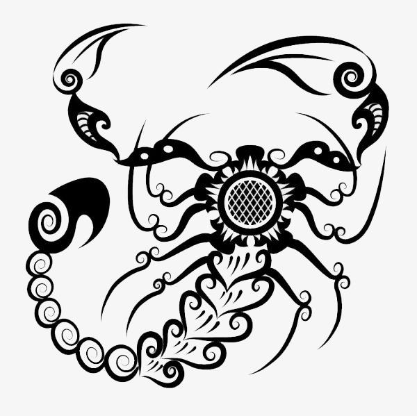 创意蝎子设计手绘
