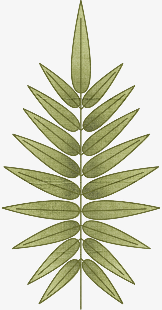 绿色手绘枝叶