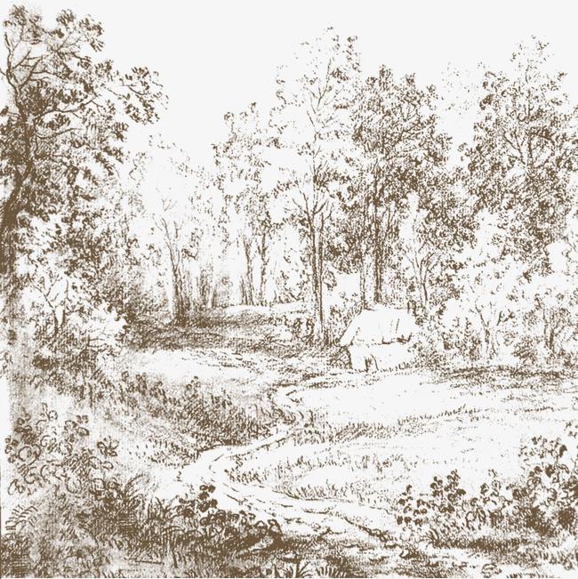 森林手绘线条png素材-90设计