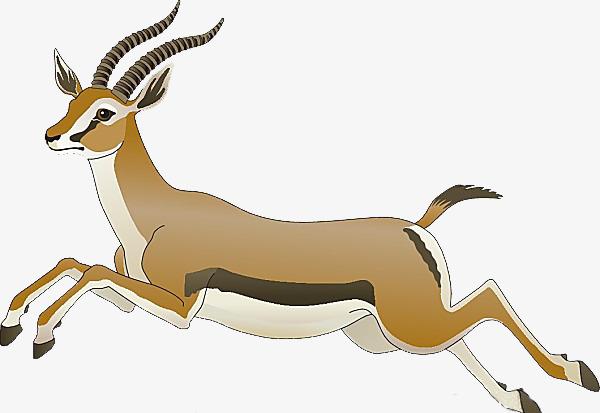 图片 > 【png】 奔跑的羚羊  分类:手绘动漫 类目:其他 格式:png 体积