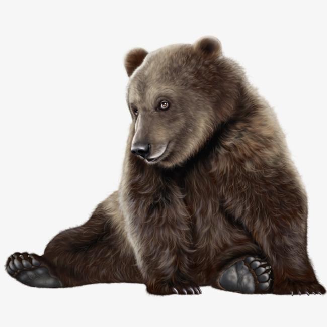 棕熊 棕色 动物 熊瞎子             此素材是90设计网官方设计出品