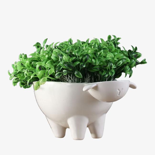 产品实物 萌物花器 动物盆栽摆件 植物盆栽家居装饰工艺品 家居摆件
