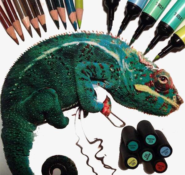 变色龙 彩笔 动物 手绘             此素材是90设计网官方设计出品