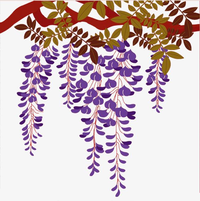 手绘紫藤花素材
