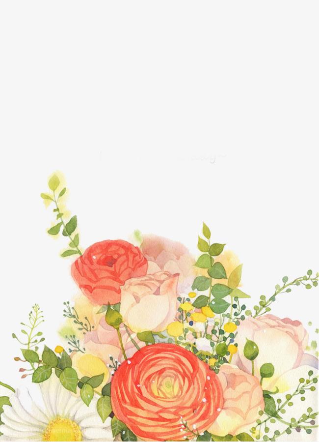 图片 > 【png】 手绘月季花