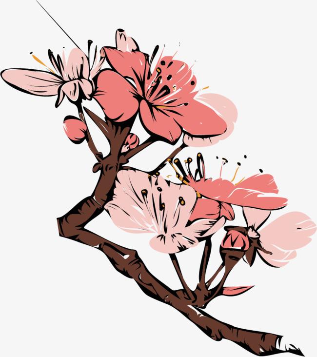 图片 > 【png】 矢量手绘梅花