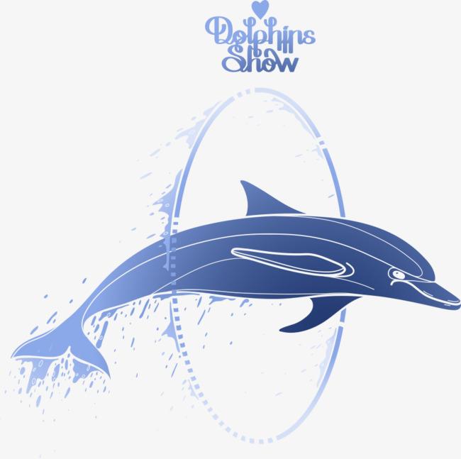 卡通手绘海豚表演跳圈