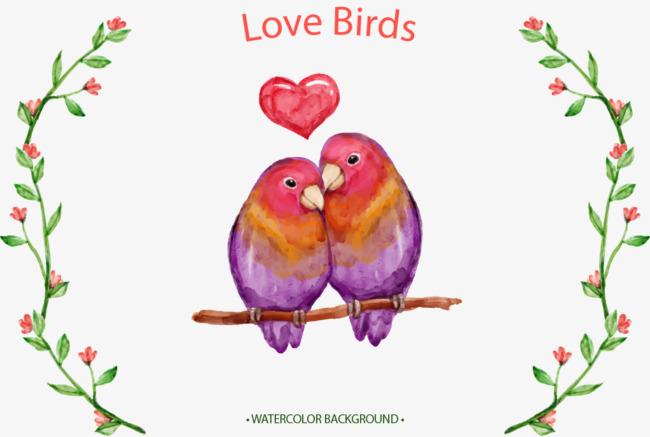 手绘水彩爱情鸟