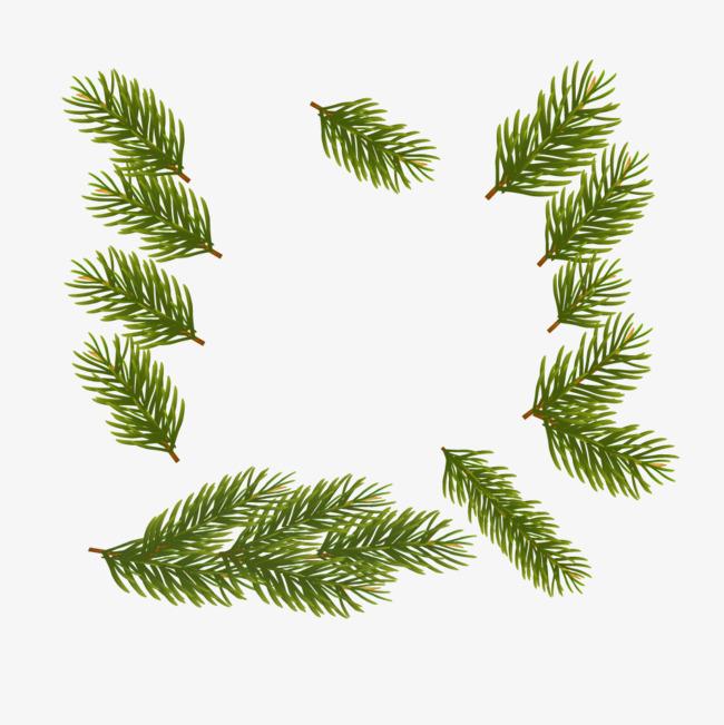 绿色矢量松树枝叶