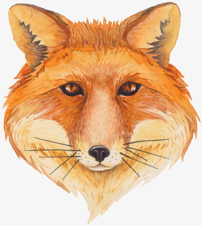 手绘狐狸头素材图片免费下载 高清卡通手绘png 千库网 图片编号