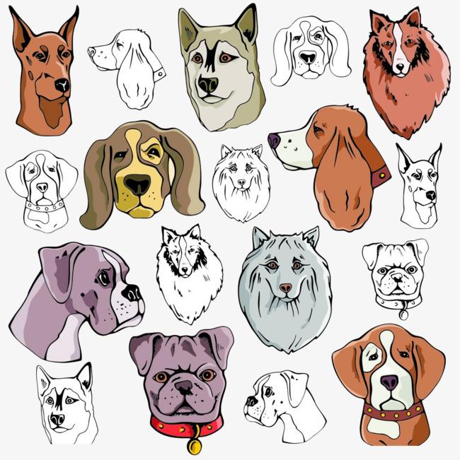卡通手绘狗