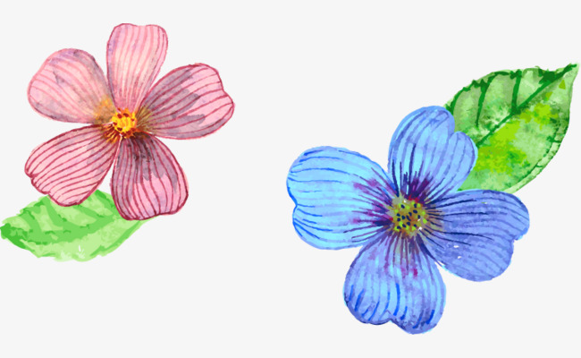 彩色手绘小花