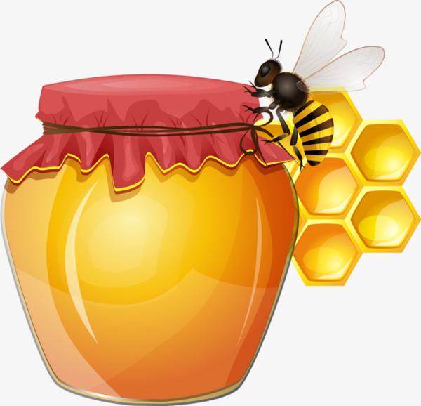 图片 > 【png】 卡通蜂蜜罐子蜜蜂  分类:手绘动漫 类目:其他 格式