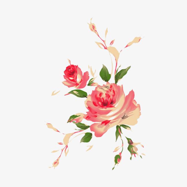 手绘粉玫瑰图片素材