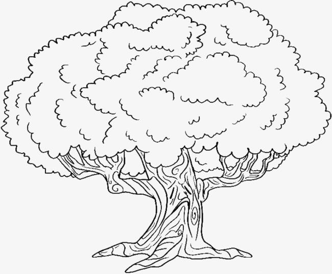 春天的大树简笔画画法