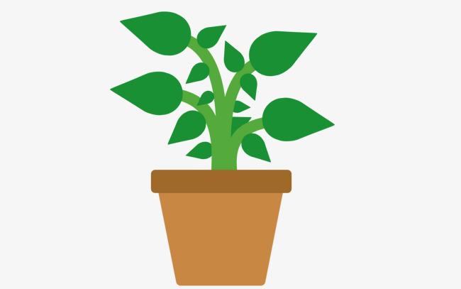 手绘花盆植物
