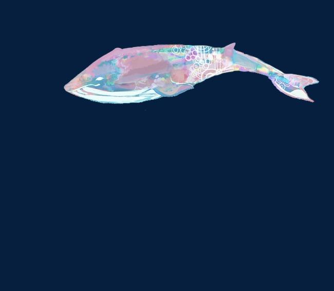 水彩手绘鲸鱼图案