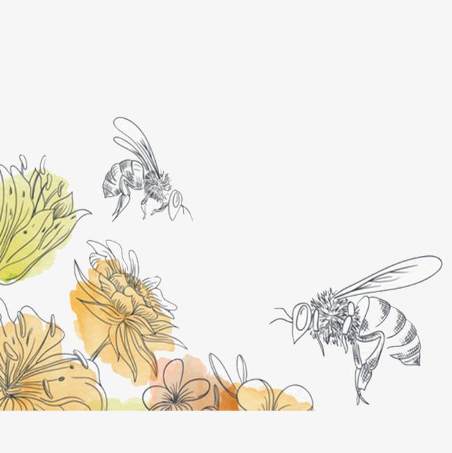手绘花朵和蜜蜂