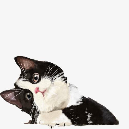 水彩画小猫素材图片