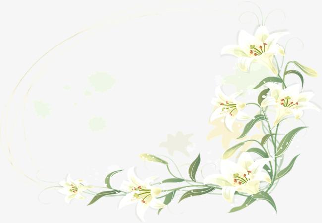 卡通手绘白色花朵边框