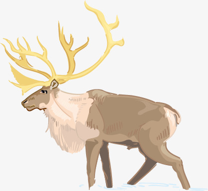 动漫麋鹿女孩手绘