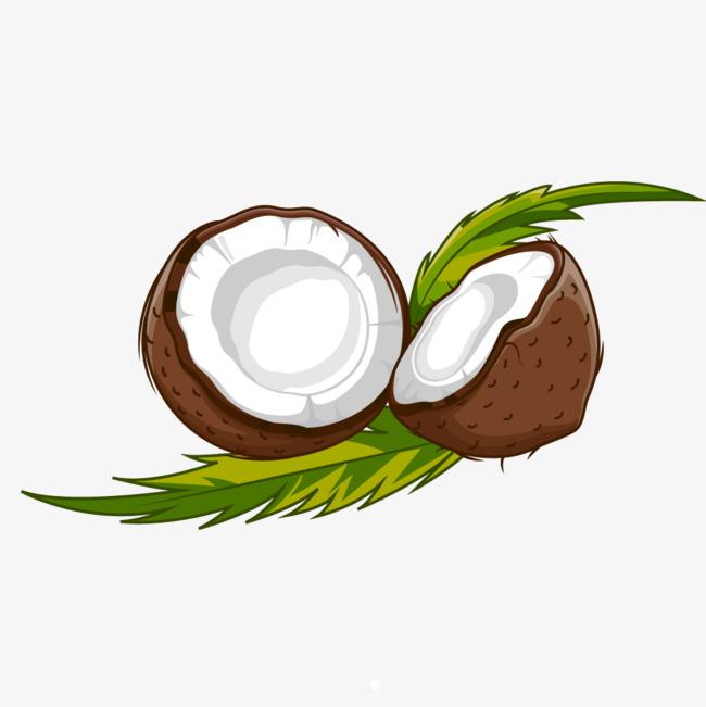 卡通两半椰子图图片