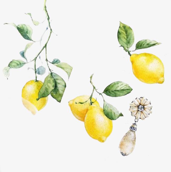 水彩手绘柠檬素材图
