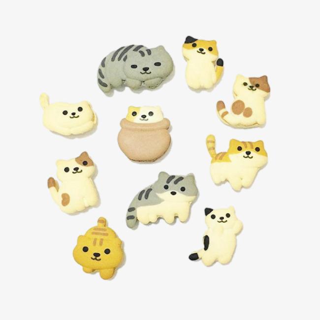 小动物造型饼干