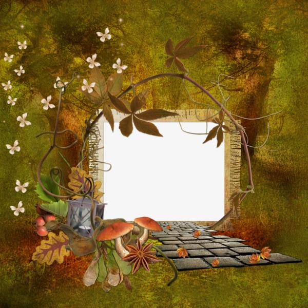 手绘茂密森林图案装饰边框