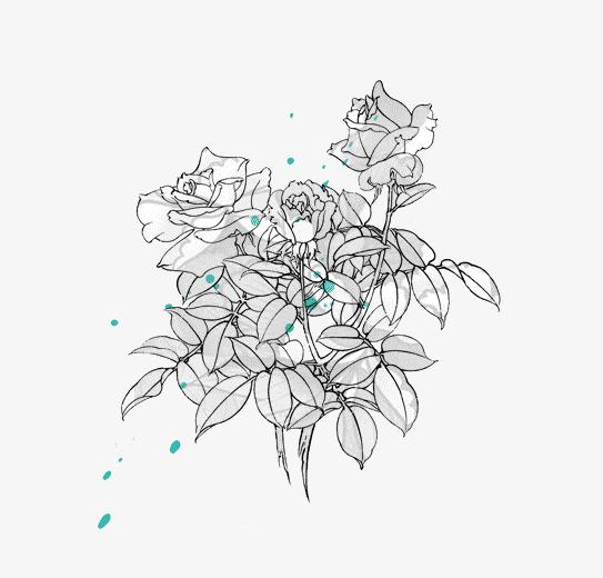 手绘简笔玫瑰玫瑰花手绘简笔画花朵叶子绘画艺术-手绘简笔玫瑰素材