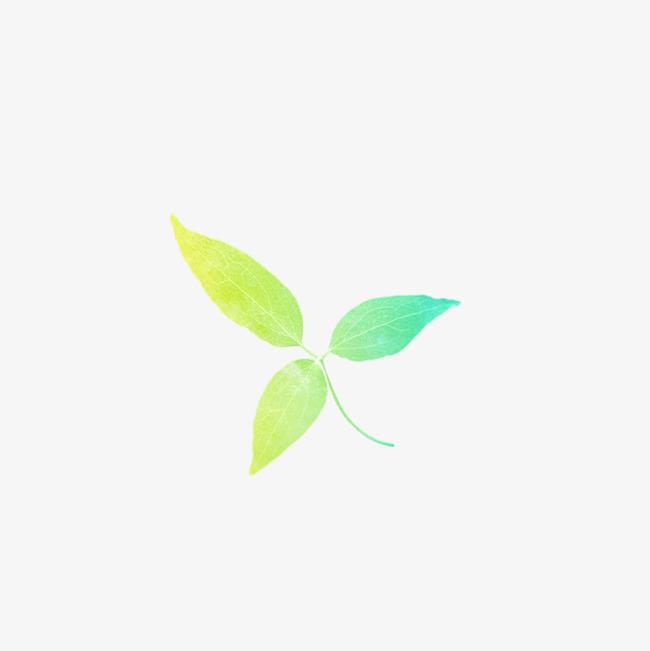 图片 > 【png】 绿色花叶  分类:手绘动漫 类目:其他 格式:png 体积