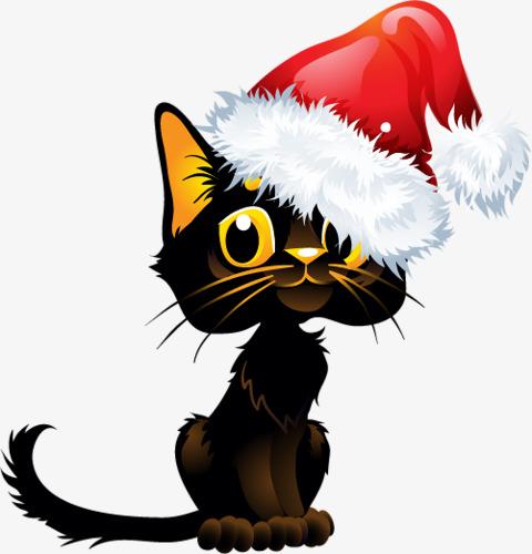 黑色猫咪带着圣诞帽