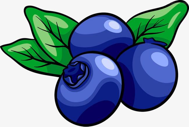 蓝莓手绘素材