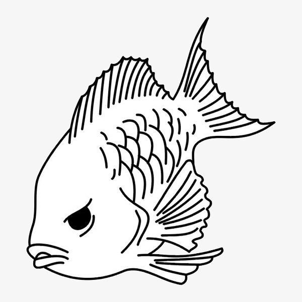 小鱼 动物 水里动物 简笔画 卡通