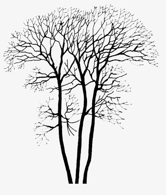 落叶的树png图片