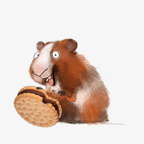 手绘吃饼干的仓鼠