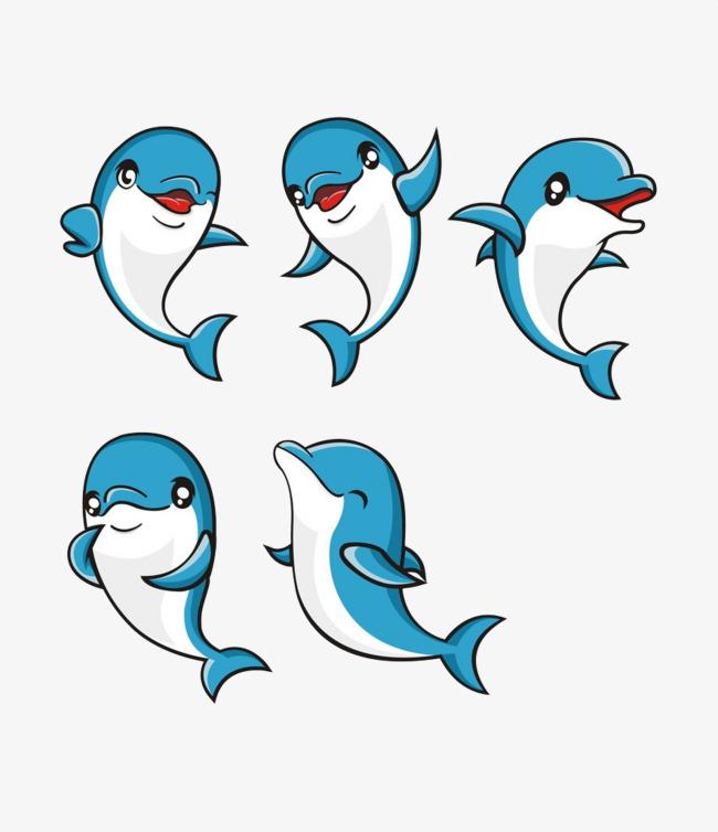 蓝色可爱小海豚