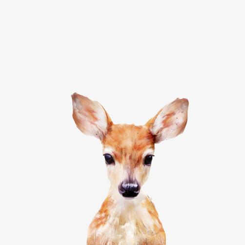 小鹿头像呆萌表情素材图片图片