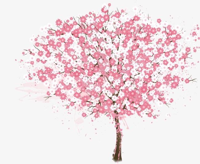 矢量手绘粉色樱花树