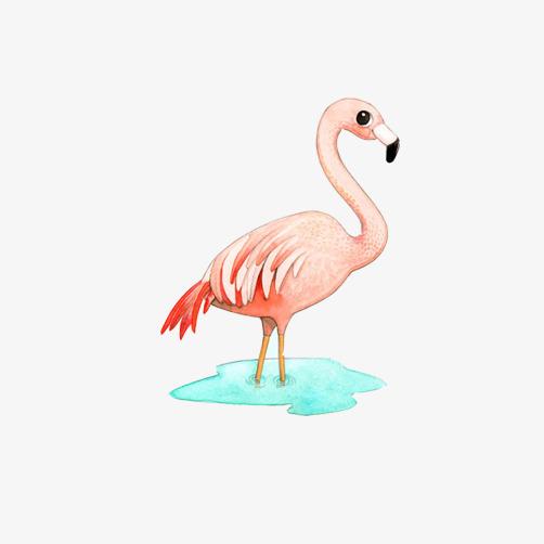 火烈鸟手绘素材图片