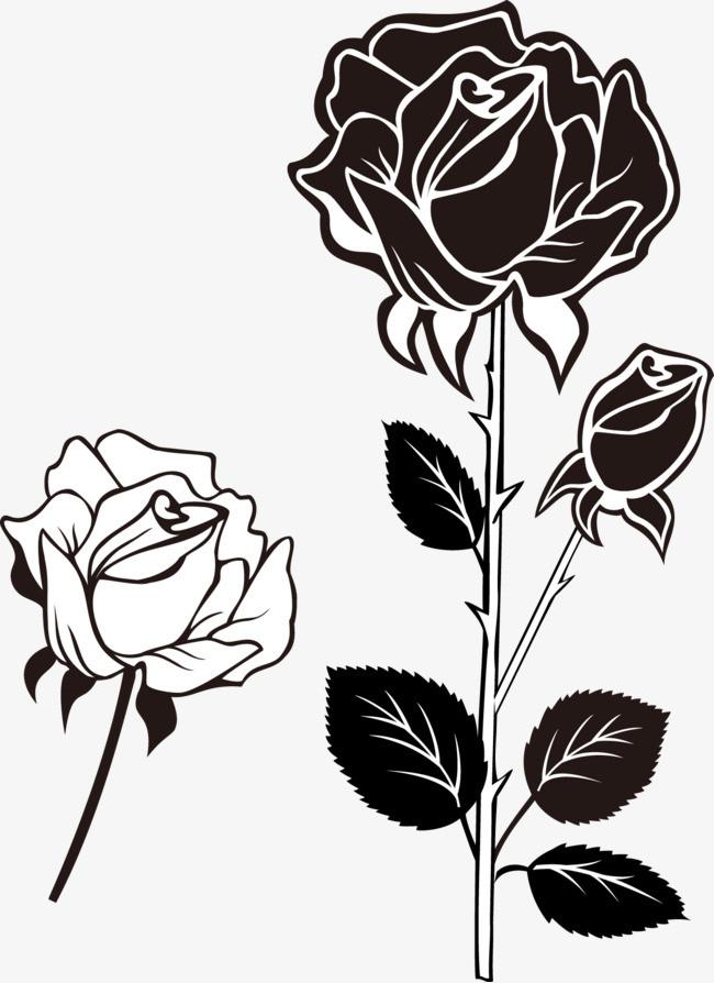 黑白线条_黑白玫瑰花png素材-90设计