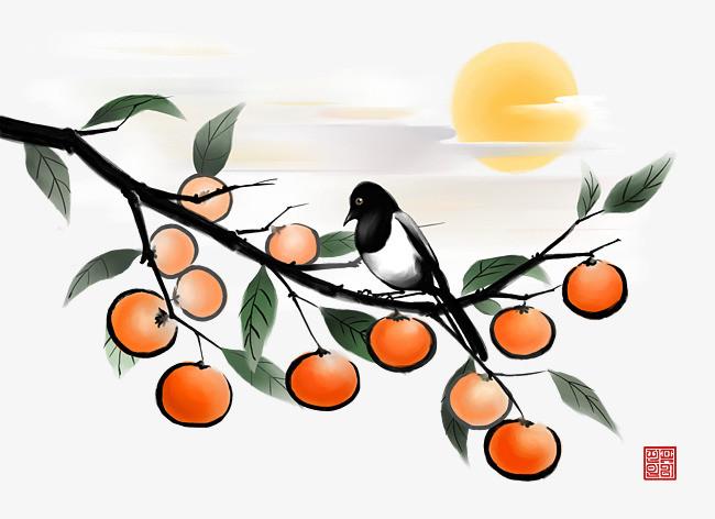 水墨画柿子树