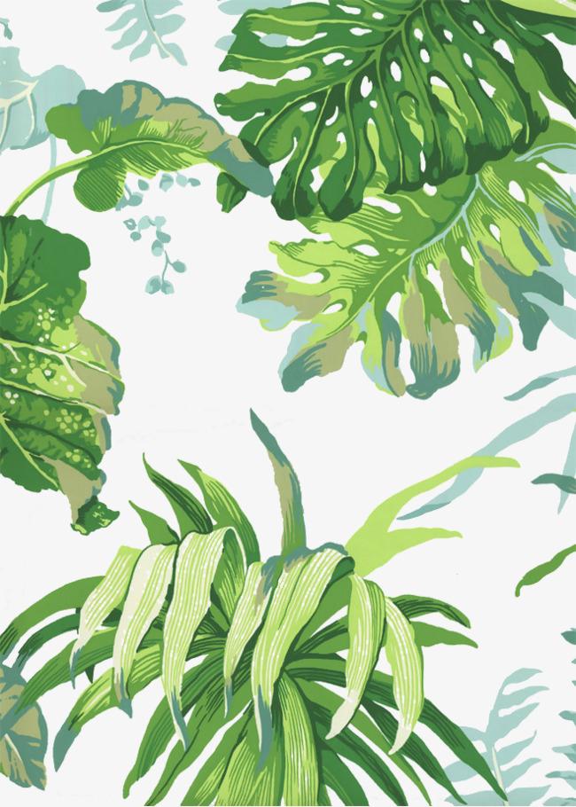手绘 叶子 绿色 装饰 植物             此素材是90设计网官方设计出