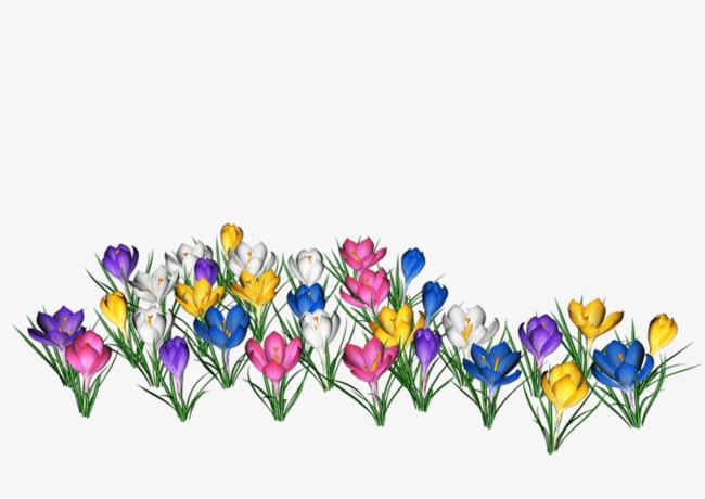 卡通手绘彩色小花