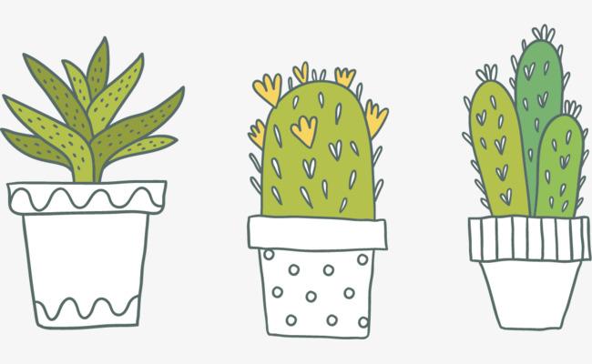 盆栽植物仙人掌素材矢量手绘元素