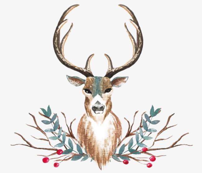 麋鹿头装饰画