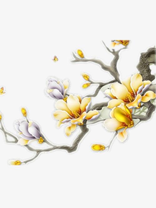 图片 > 【png】 好看的玉兰花  分类:手绘动漫 类目:其他 格式:png 体