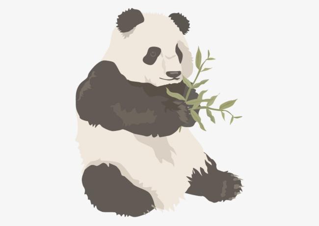 矢量手绘熊猫【高清效果元素png素材】-90设计