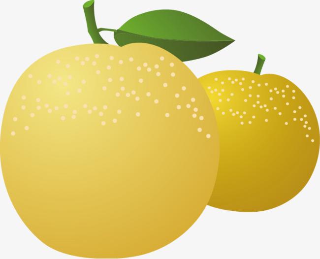 图片 > 【png】 苹果梨矢量素材  分类:手绘动漫 类目:其他 格式:png